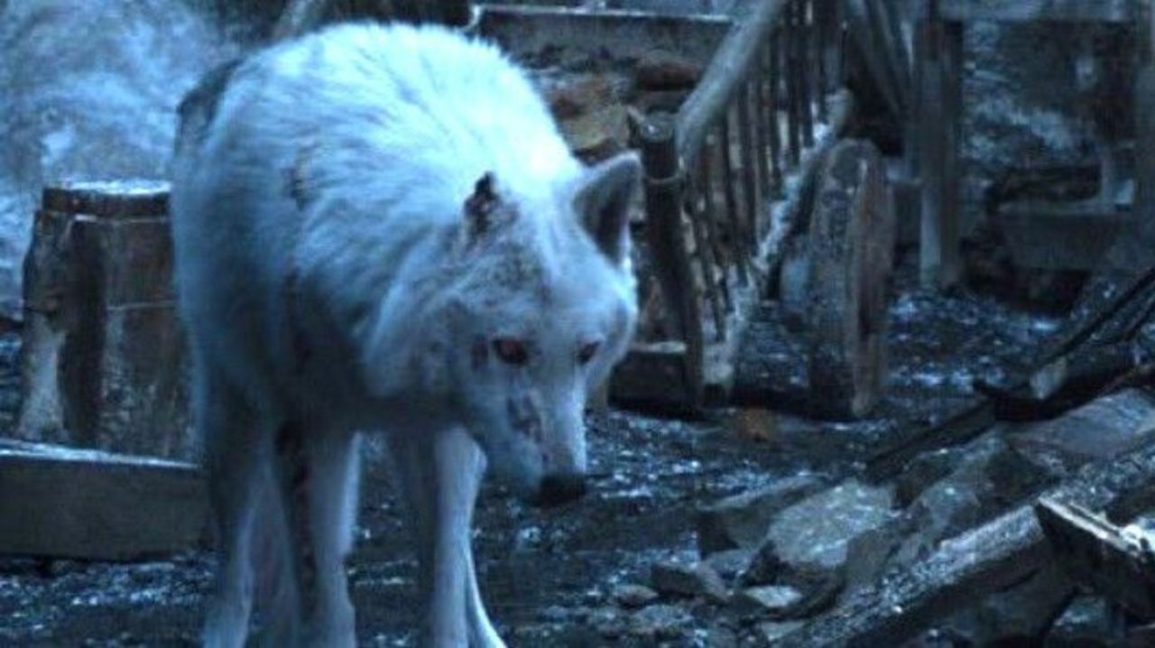 Ghost Makes a Surprising Appearance in Game of Thrones Final Episode