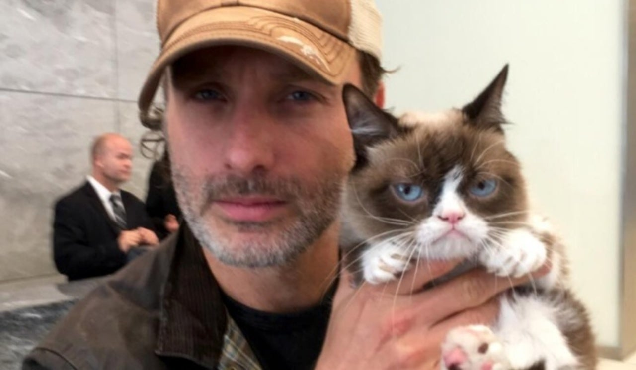 The Walking Dead Shares Andrew Lincoln With Grumpy Cat Photo