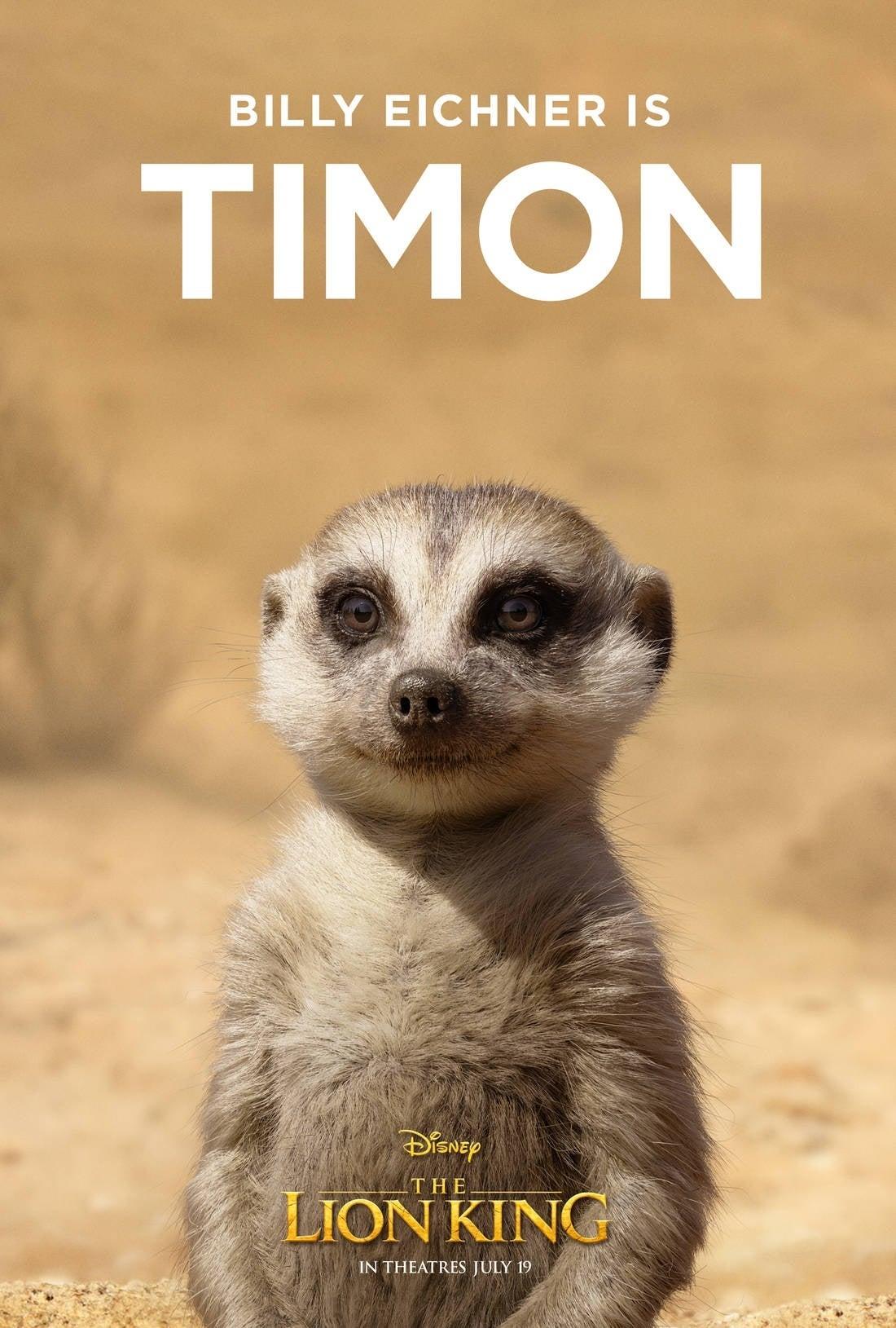 lion king poster Timon