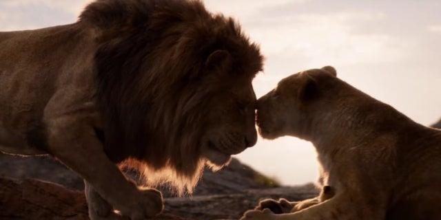 lion king simba nala