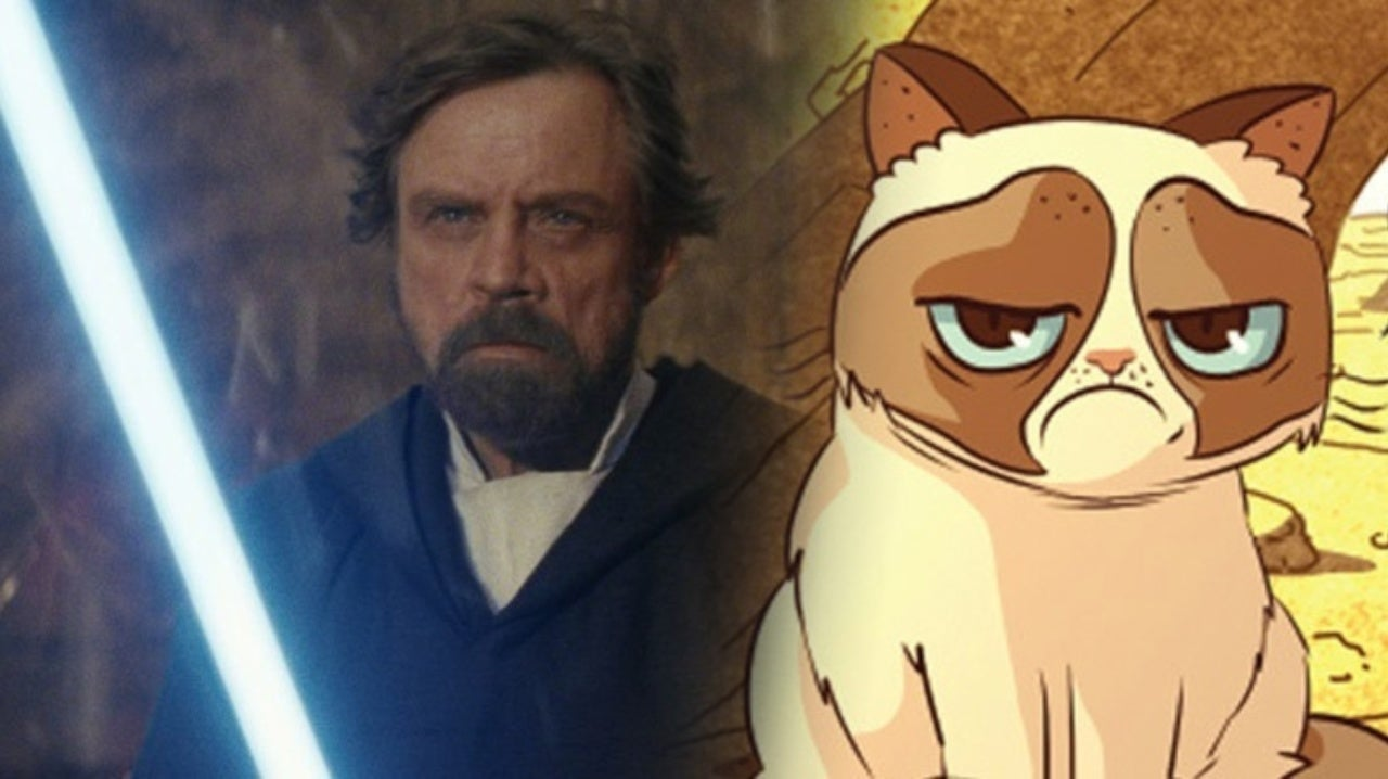 Star Wars Star Mark Hamill Pays Tribute To Grumpy Cat