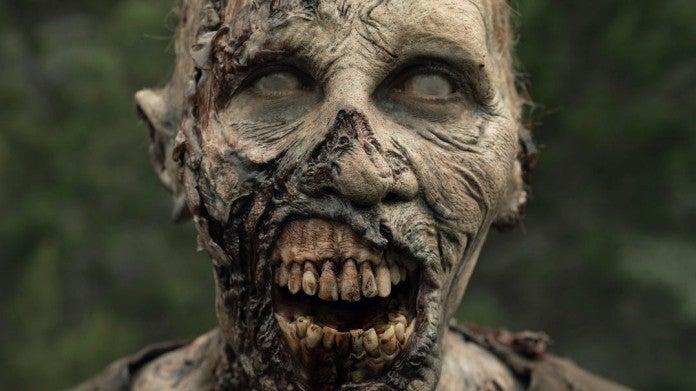 Walking Dead zombie walker