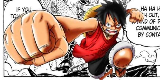 One Piece Bio
