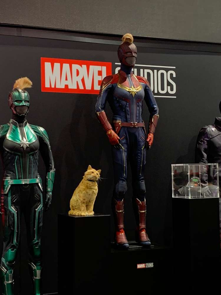 SDCC 2019 Preview Night 5745