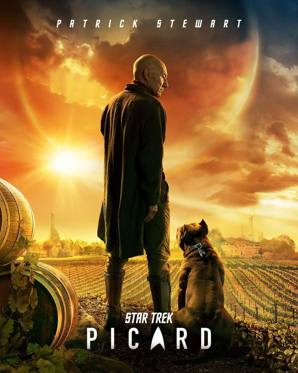star-trek-picard-1178143.jpeg?auto=webp&width=960&height=1200&crop=960:1200,smart