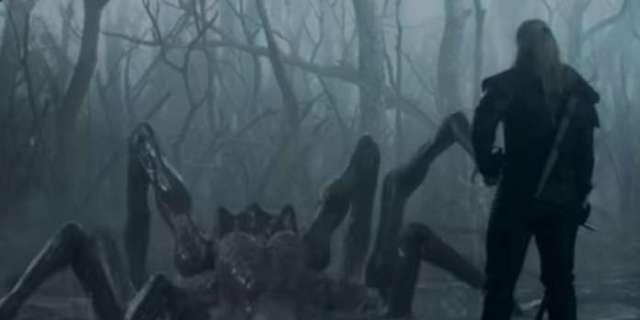 Witcher Spider