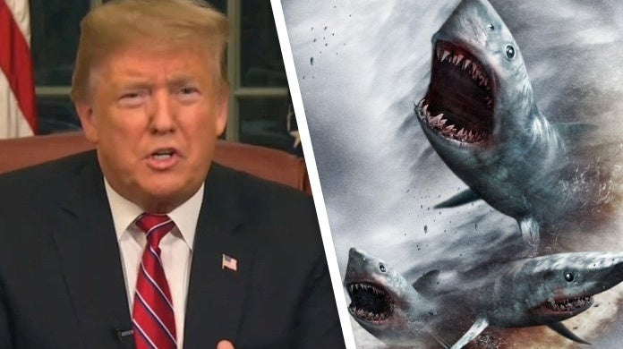 donald trump hurricanes bombs sharknado