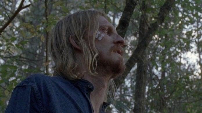 Dwight Walking Dead