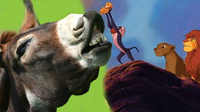 lion-king-song-donkey-viral