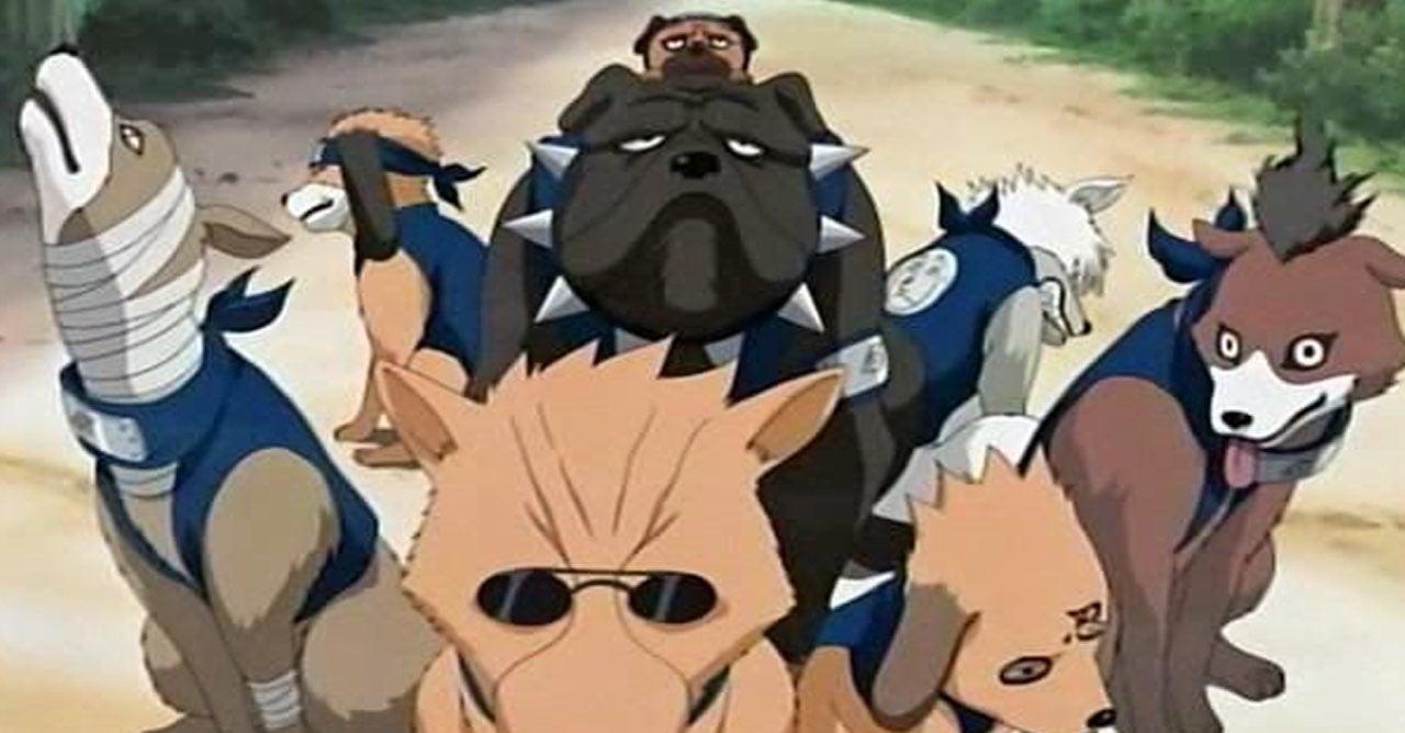 naruto kakashi dogs
