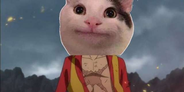 One Piece Cosplay Gives Luffy A Purr-fect Makeover