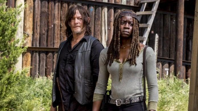 Walking Dead Daryl Michonne