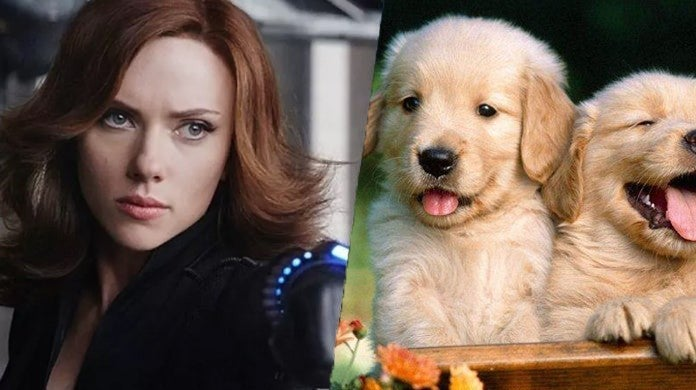 scarlett-johansson-black-widow-puppies-party