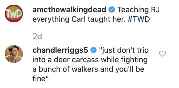 The Walking Dead Chandler Riggs shade Carl death