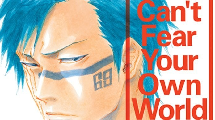 Bleach Can't Fear Your Own World Cover Viz Media
