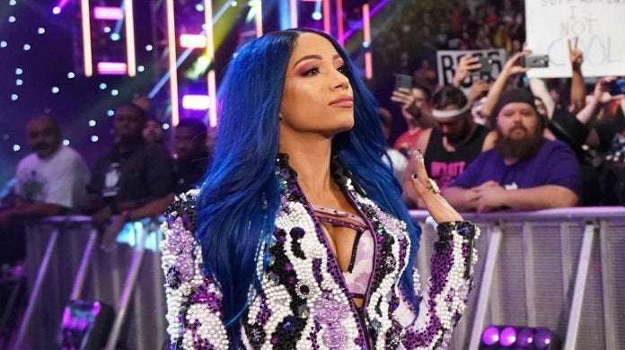 Sasha-Banks-Hell-in-a-Cell