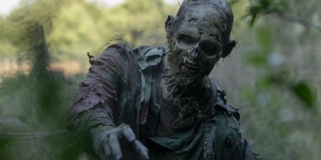 The Walking Dead Developing Project Focused on a Single Survivor