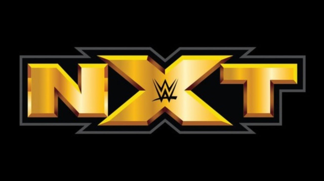 NXT Star Injured Last Night After Crazy Spot