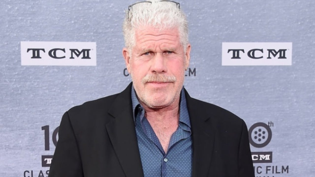 Hellboy Star Ron Perlman Divorcing Wife of 38 Years