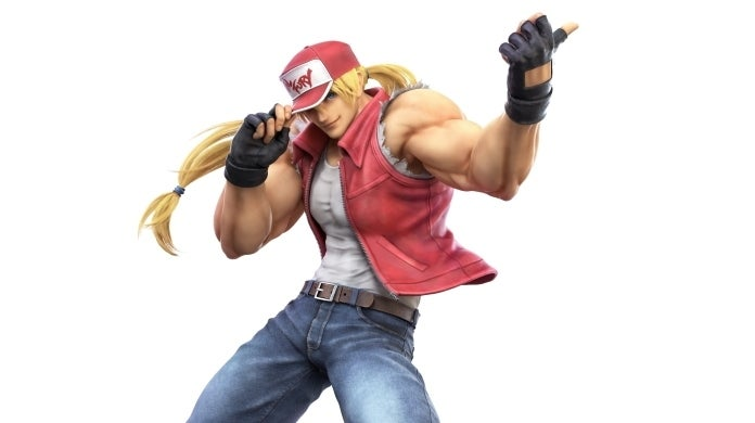 smash bros terry cropped hed