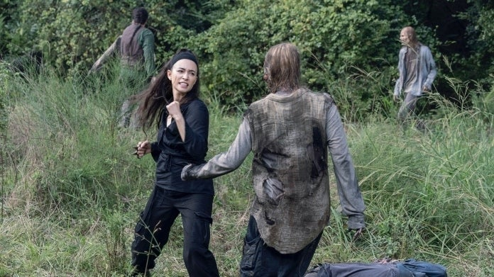 The Walking Dead Rosita 1008 The World Before