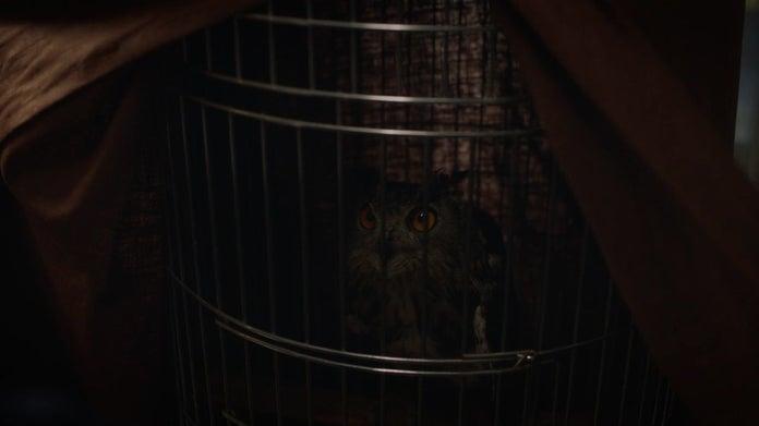 Watchmen HBO Owl