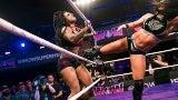 WOW: Women of Wrestling
