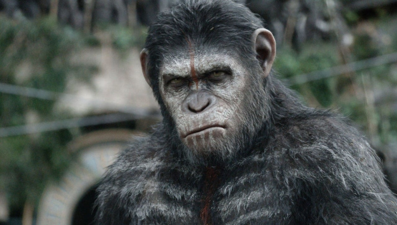 Planet of the Apes Trends After Unsettling Real-Life Monkey Attack