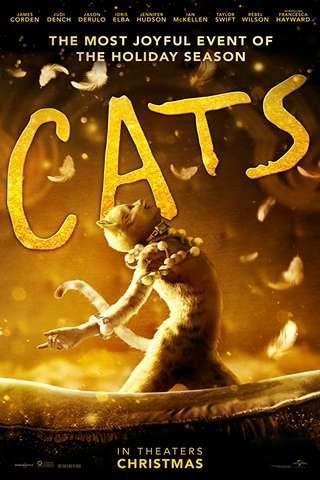cats_default2