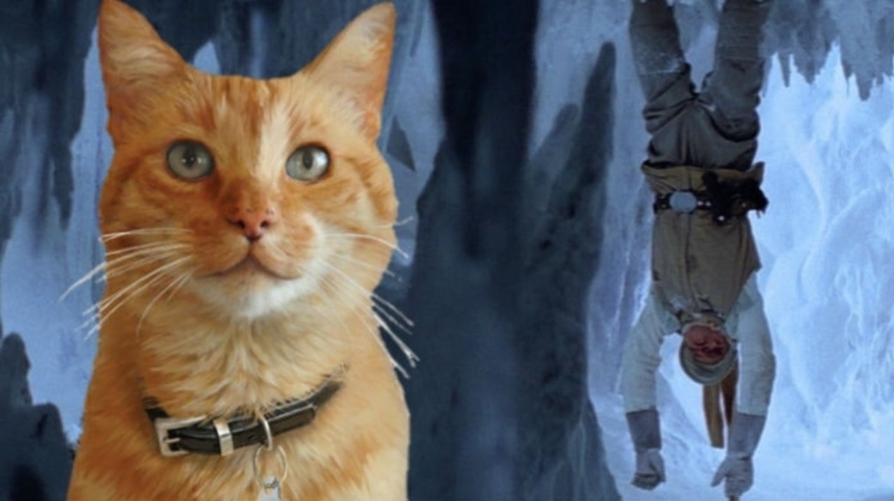 Star Wars: Mark Hamill Shares Adorable Video of Cat Devouring Luke Skywalker
