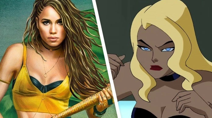 birds of prey black canary animated justice league unlimited