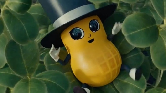 Mr Peanut Baby Nut