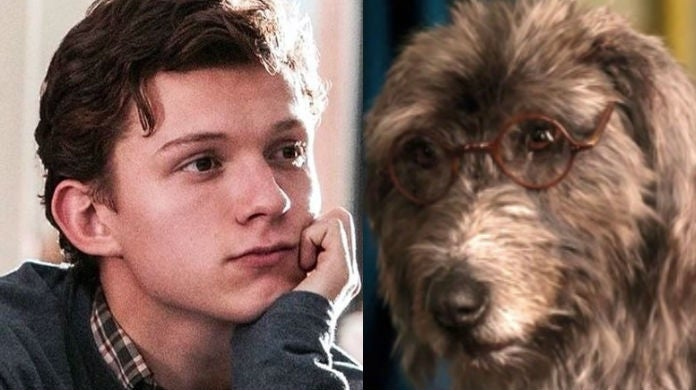 tom-holland-dog-dolittle