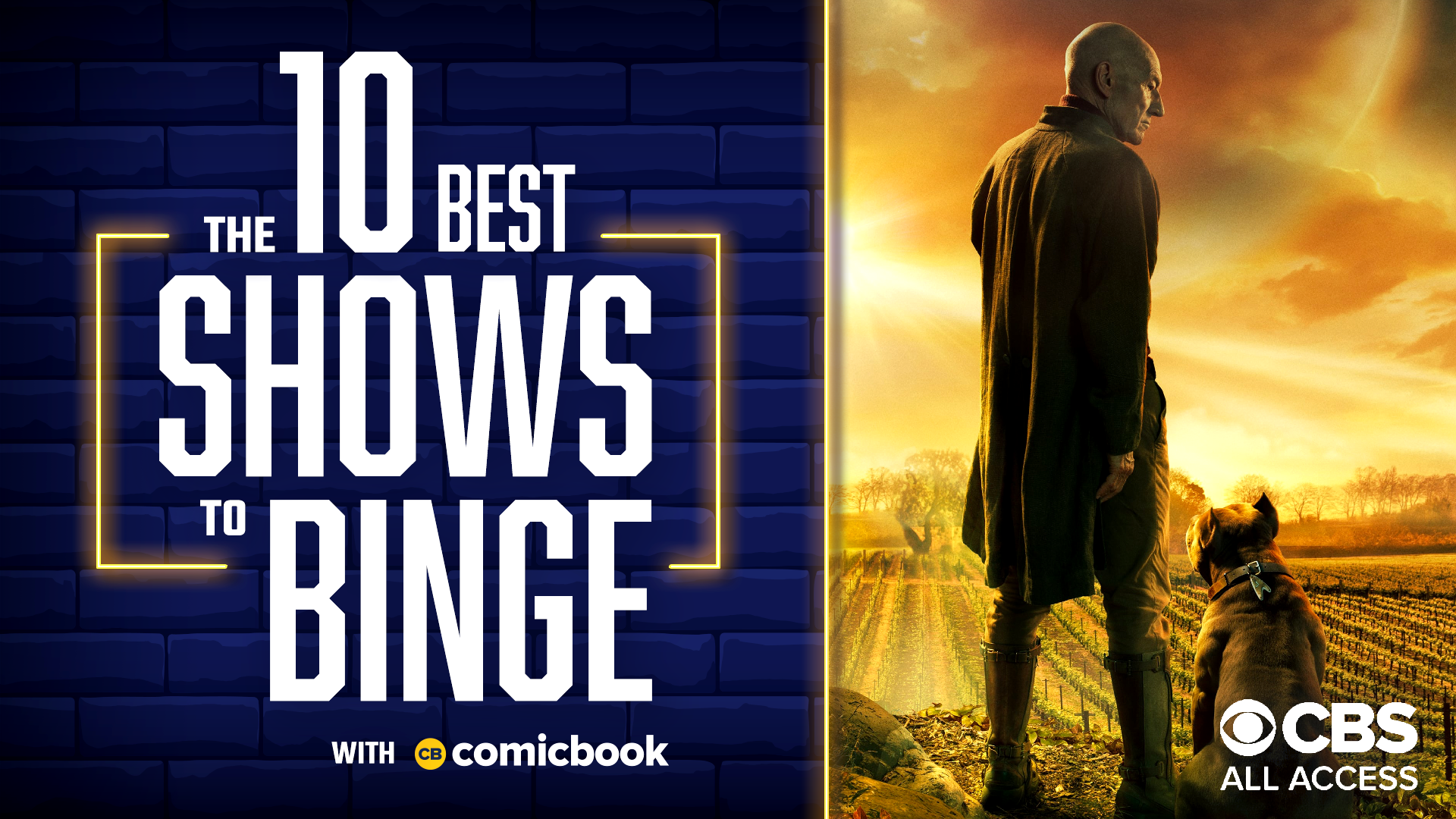 10 Best Shows to Binge on CBS All Access
