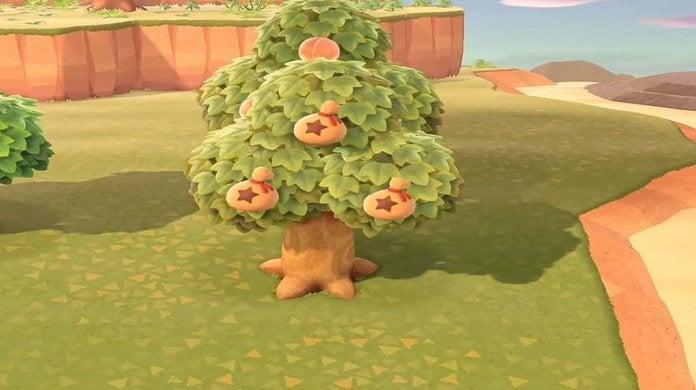 Animal Crossing Money Tree