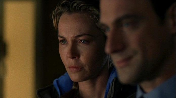 law and order svu connie nielsen dani beck