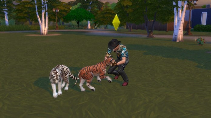 Tiger King Sims