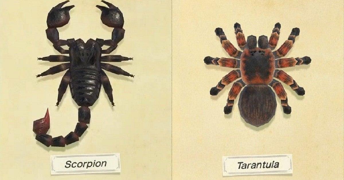Animal Crossing New Horizons Scorpion Tarantula