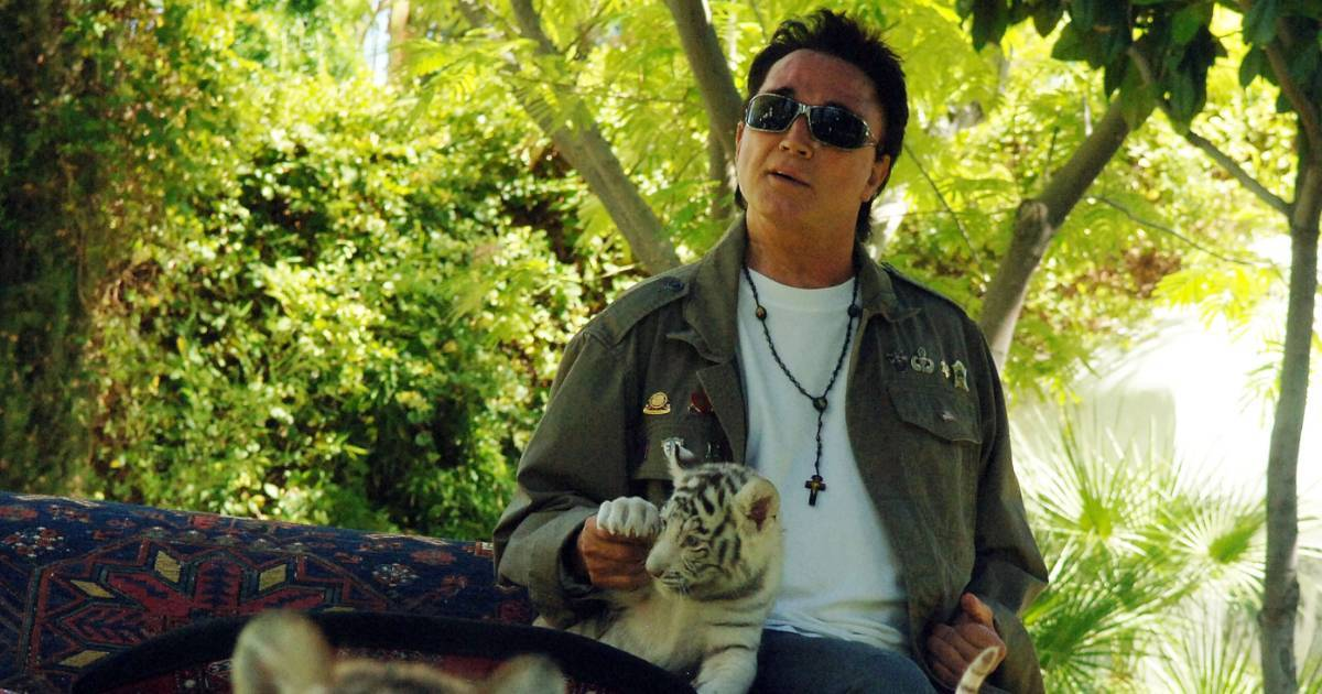 roy horn siegfried and roy tiger