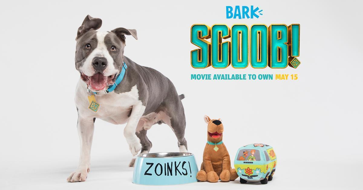 scoob-barkbox-scooby-doo