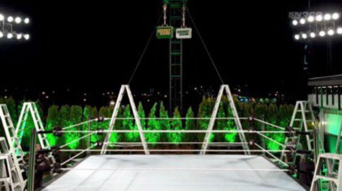 WWE-Money-in-the-Bank-Roof