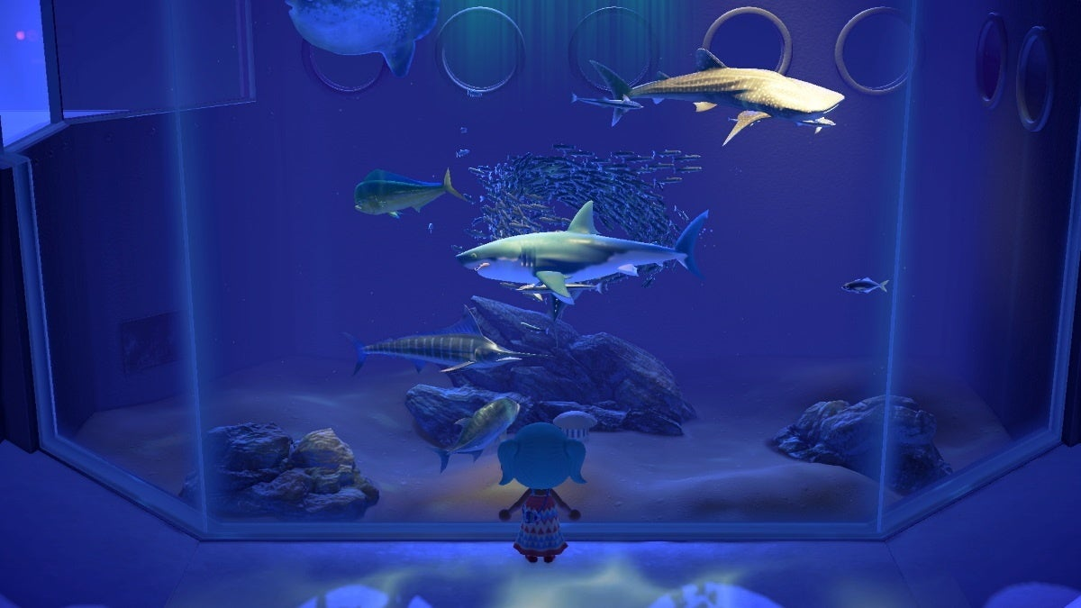 animal crossing new horizons museum fish new cropped hed