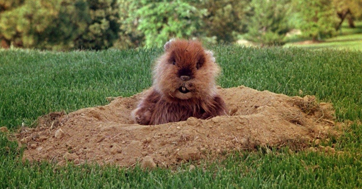Caddyshack Puppeteer Pat Brymer Dead at 70