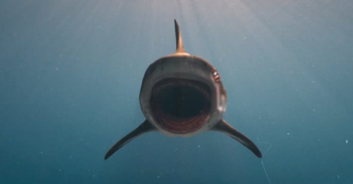 deep blue sea 3 shark