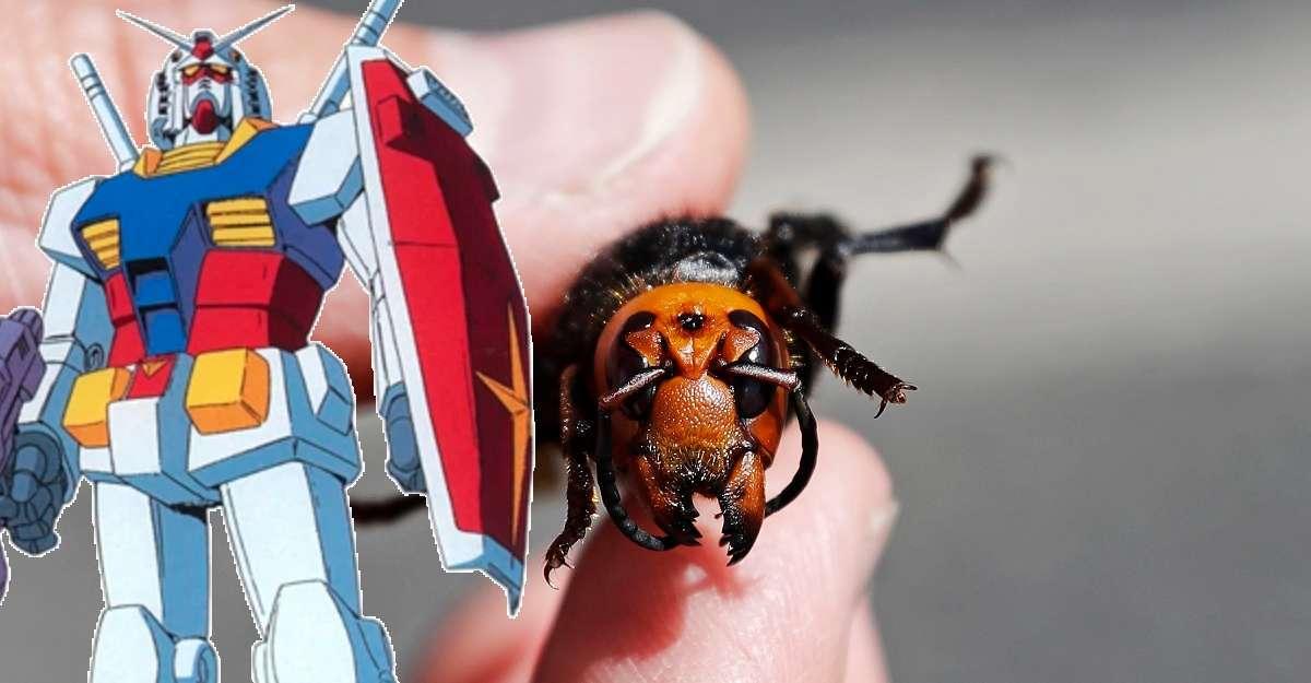 Gundam Gunpla Murder Hornet
