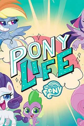 pony_life_temp_default
