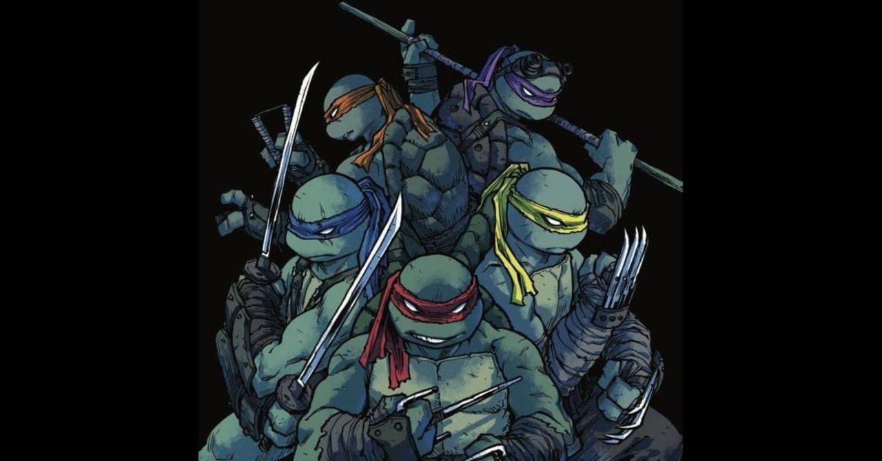 Teenage Mutant Ninja Turtles Add a New Member