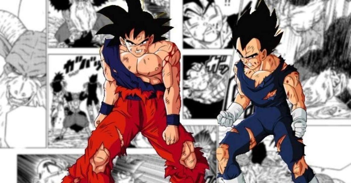 Dragon Ball Goku and Vegeta Loss