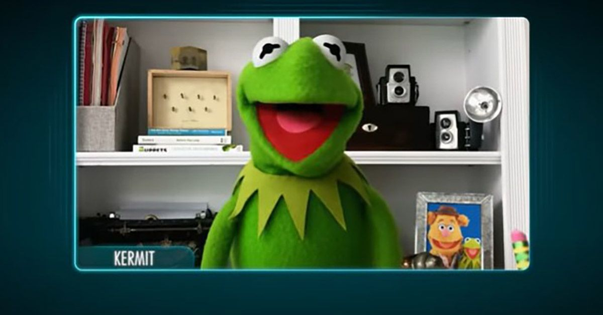 muppets now disney plus kermit the frog zoom