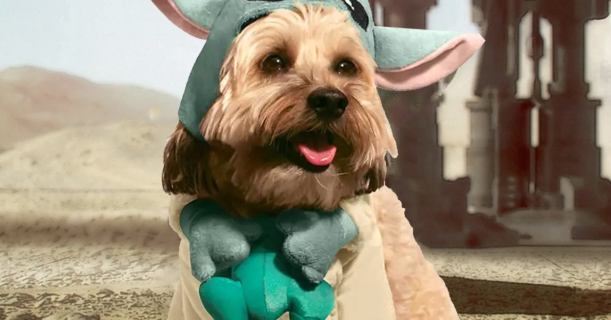 baby-yoda-dog-costume-top